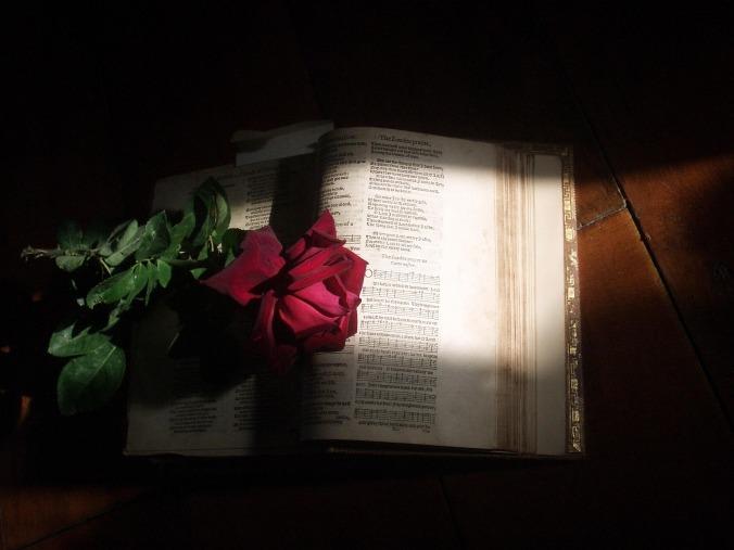 bible-1998655_1920